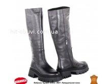 Сапоги Allshoes 166057